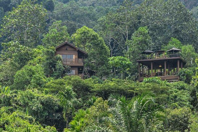 Templer Park Rainforest Retreat - Villa - Cinco Habitaciones Villa, Capacidad 16