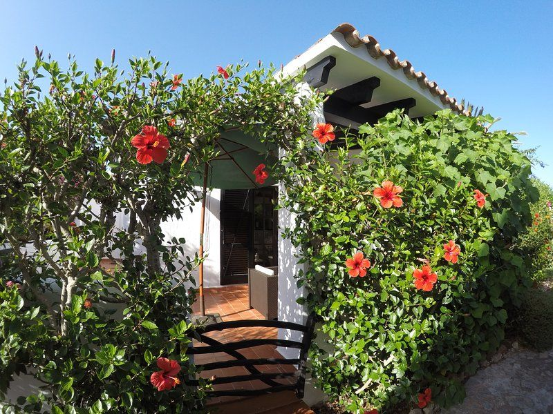 Beautiful bungalow just 1 minute from the beach!