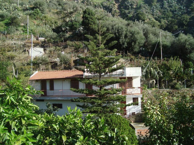 Casa singola, immersa nel verde