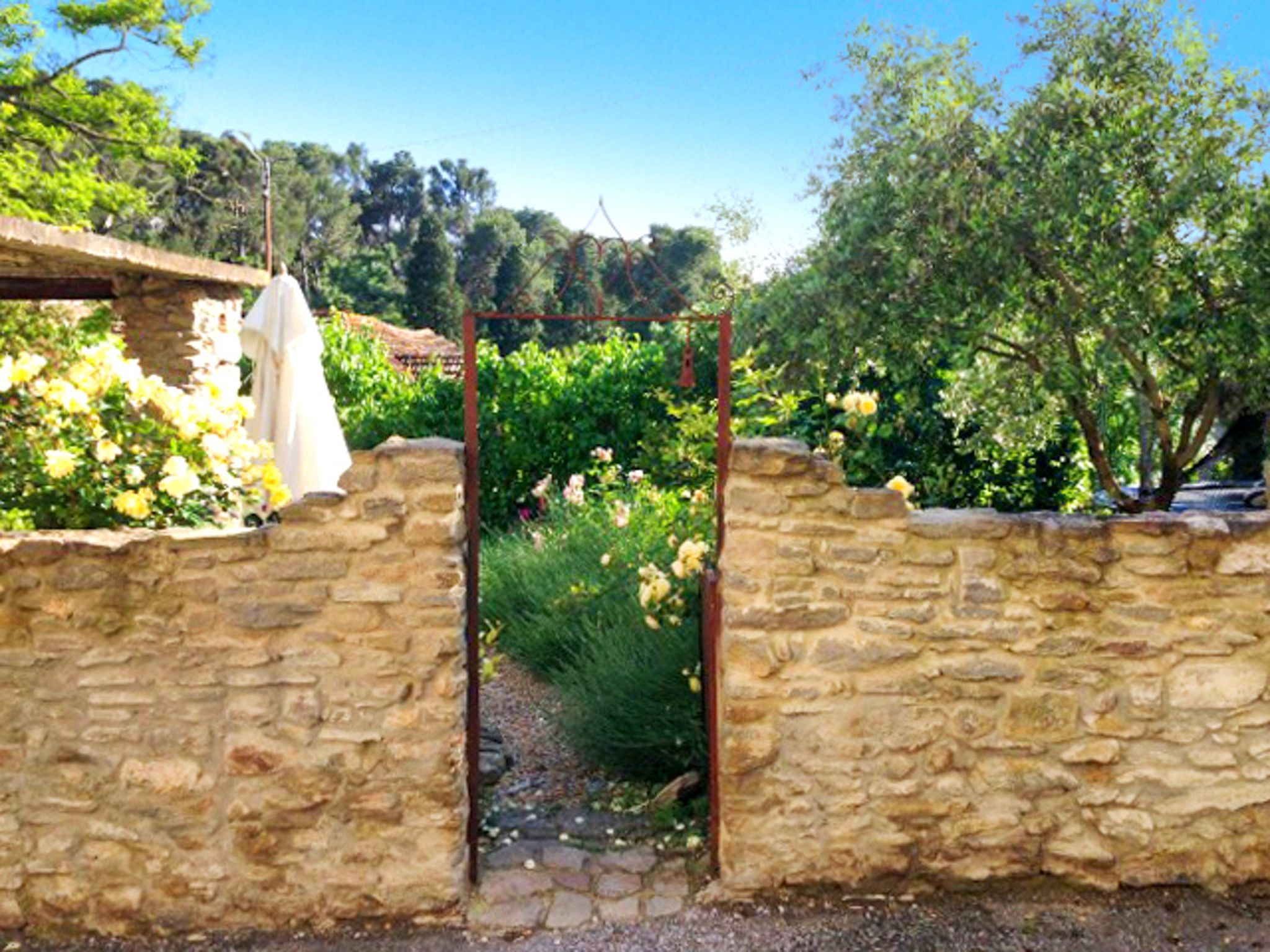 Superb Manor House in the Aude amongst vineyards & sunflowers, 10 min from Carcassonne – sleeps 10