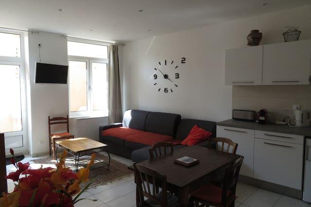Appartement à Lyon de 1 chambre