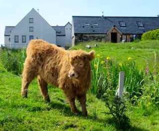 Active Holiday in the Highlands?
