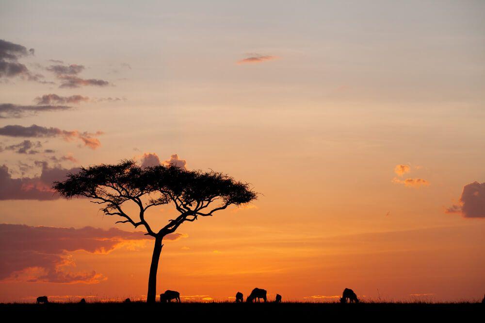 coucher de soleil maqnifique