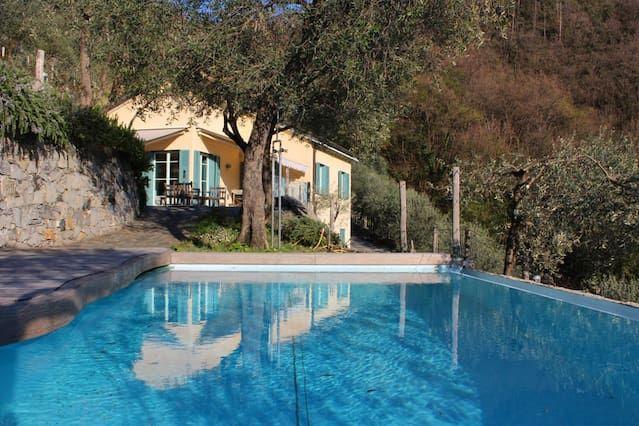 Villa, pool, seaview in olive grove