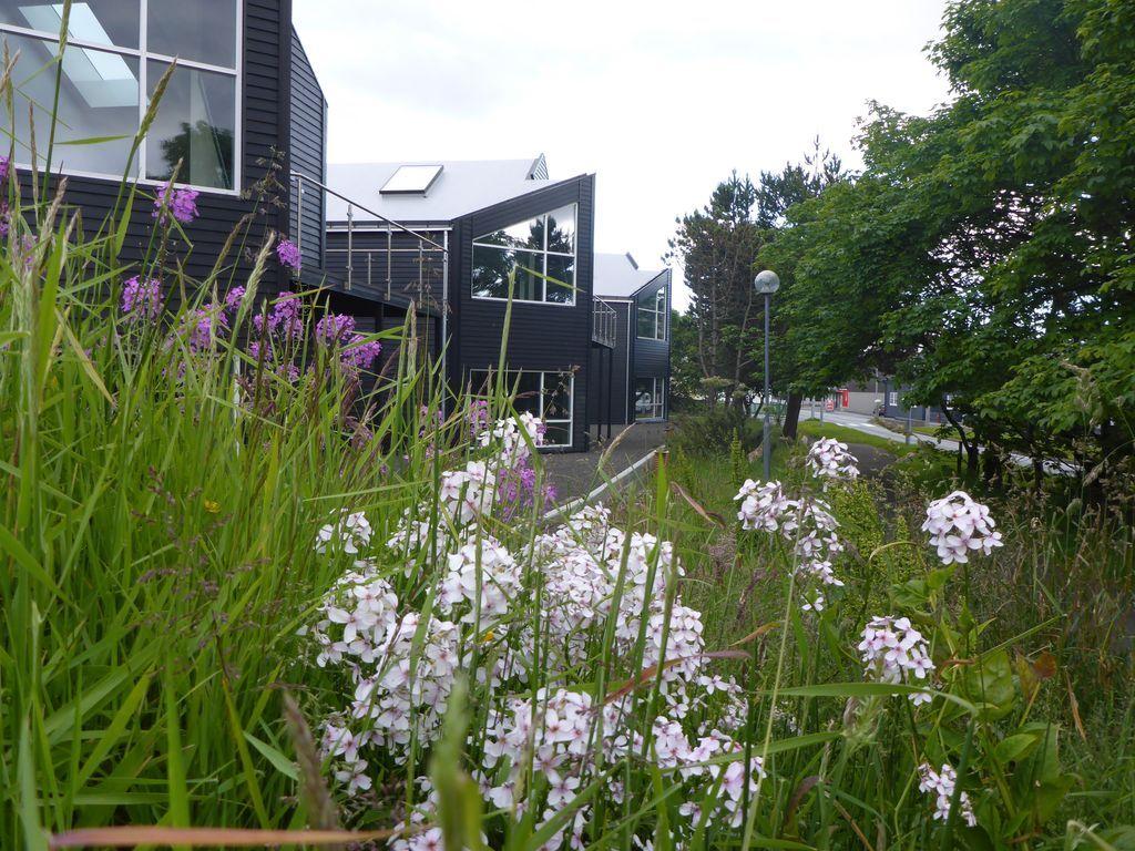 Alojamiento atractivo en Tórshavn