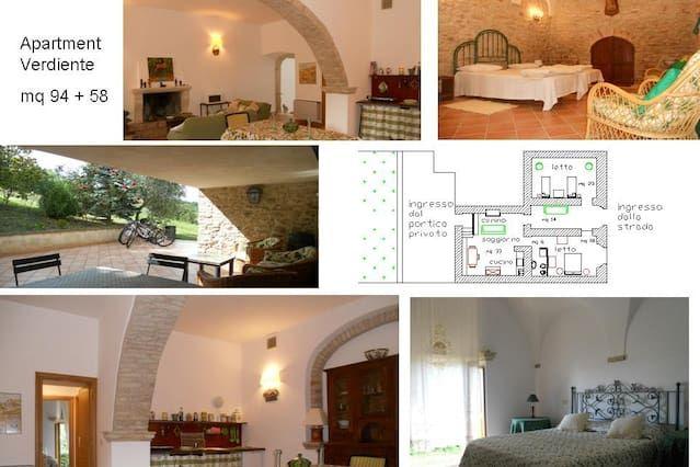 Chambres / Maison d'Hôtes: Agriturismo Il Palmarone