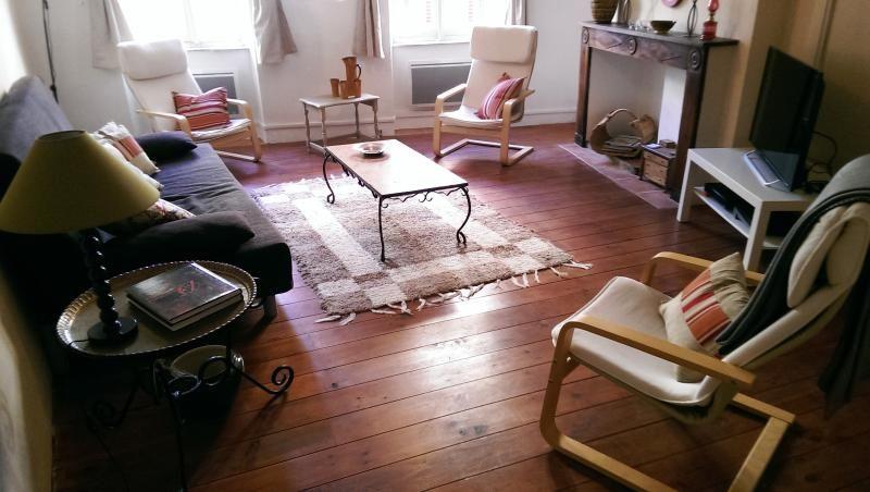 Sunny, spacious house 'Casa Rita' in Limoux
