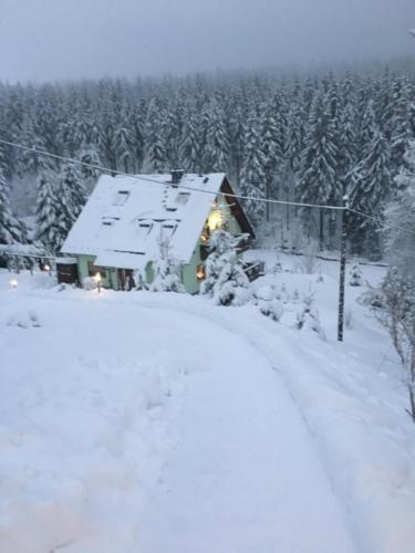 Hébergement à Tellerhäuser à 4 chambres