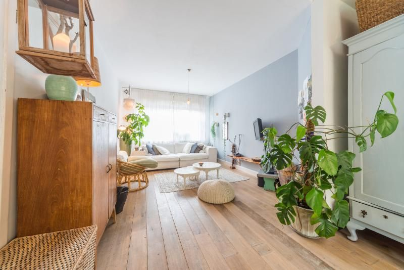 Attractive holiday home with  Pets welcome in Amsterdam