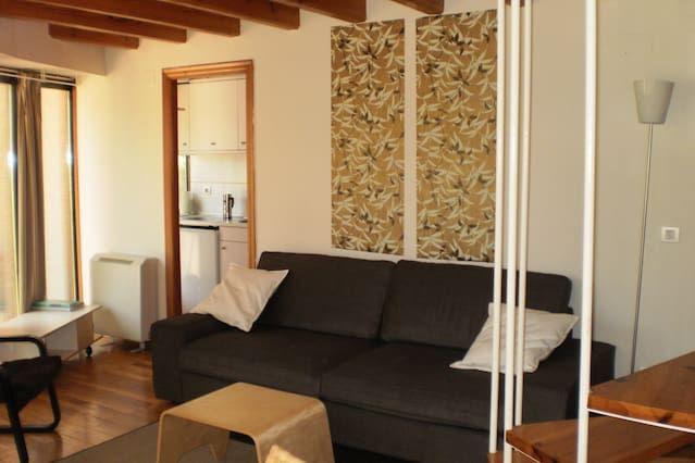 Ideal alojamiento vacacional en Burgos con  Calefacción