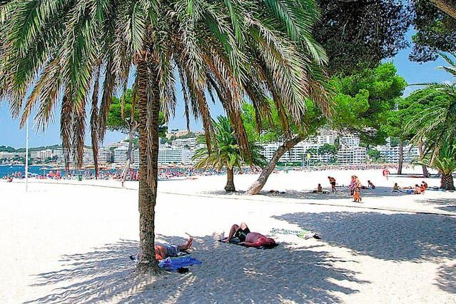 Nice apartment direct to Santa Ponsa Beach. Suitable direct beach Santa Ponsa