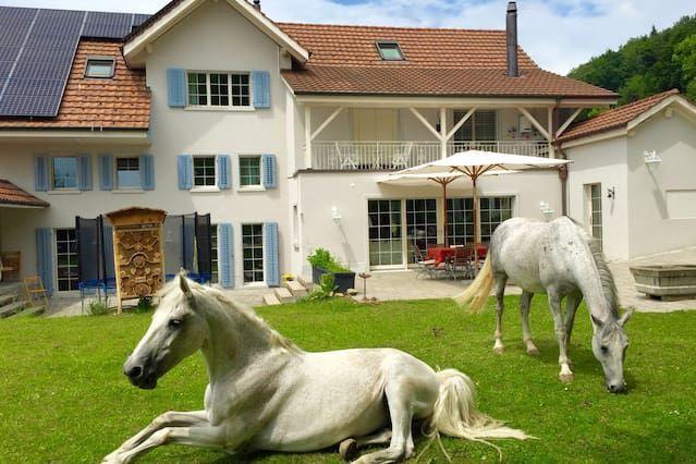 Apartamento de Lujo en Countryhouse maravilloso
