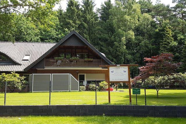 Neu modernisierte Ferienwohnung mit ca. 110 m². Waldgrundstück mit ca. 4600m²