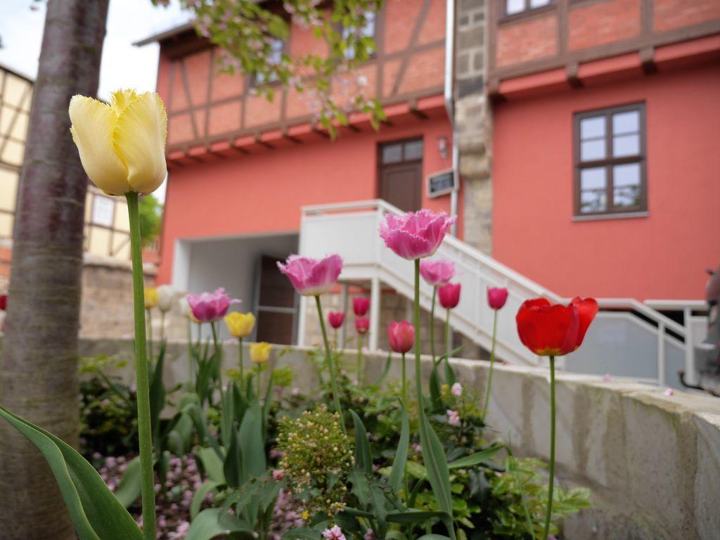 Ferienunterkunft in Quedlinburg mit 2 Zimmern