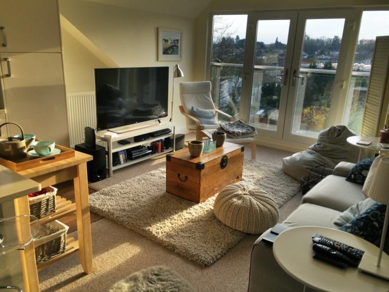 Modern, light, penthouse apartment near London