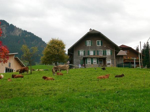 Vivienda en Schwarzenberg lu para 8 huéspedes