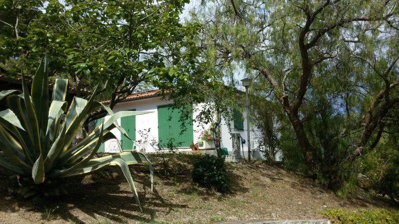 Villa rodeada de verde isla de Elba
