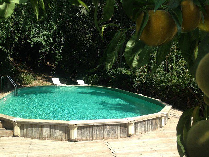 Kid friendly farmhouse w pool