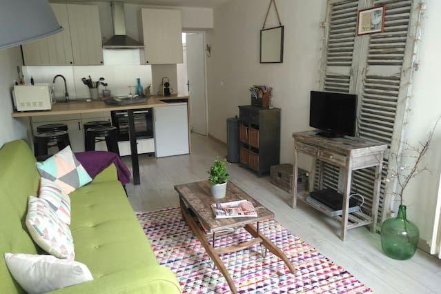 Appartement avec 1 chambre à Ascain