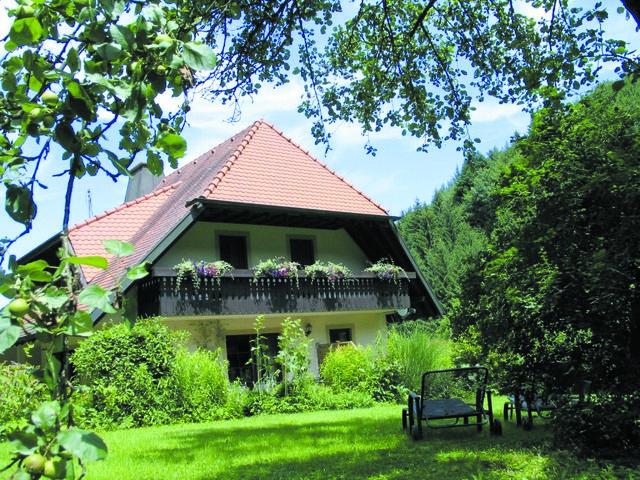 Haus Brigitte - Hintere Mühle - Ferienwohnung 65qm Talblick*****