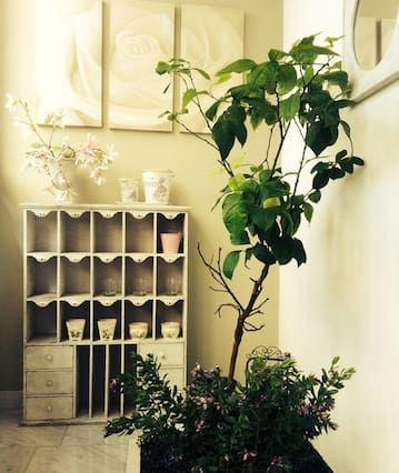 Apartamento para 11 personas en Cesena