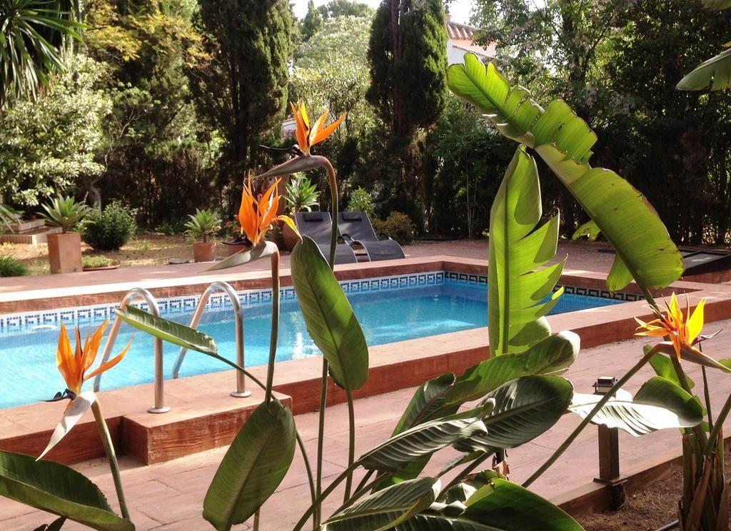Encantador alojamiento con jardín