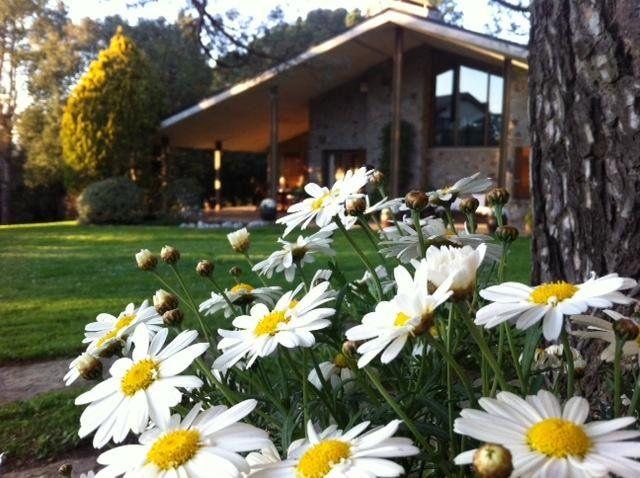 villa encantadora en parque natural Montseny