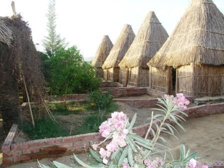 Badry Sahara Camp