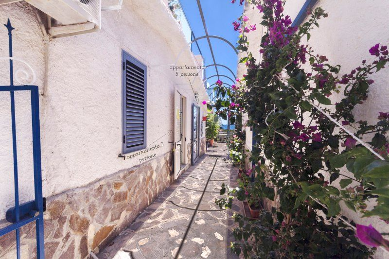 Apartment with garden, 50 meters to the sea