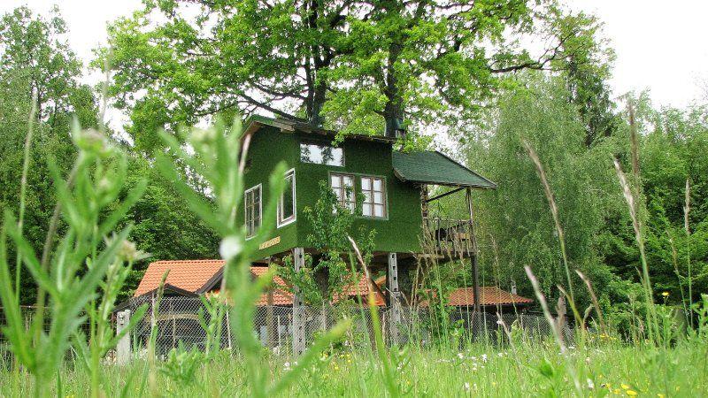 Fairytale tree house RAMONA