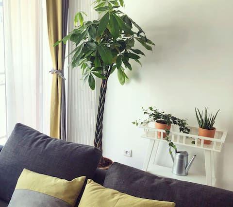 Apartamento provisto en Deauville