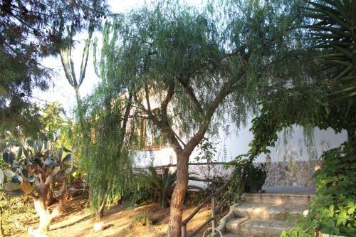 Alojamiento con jardín en Altavilla milicia