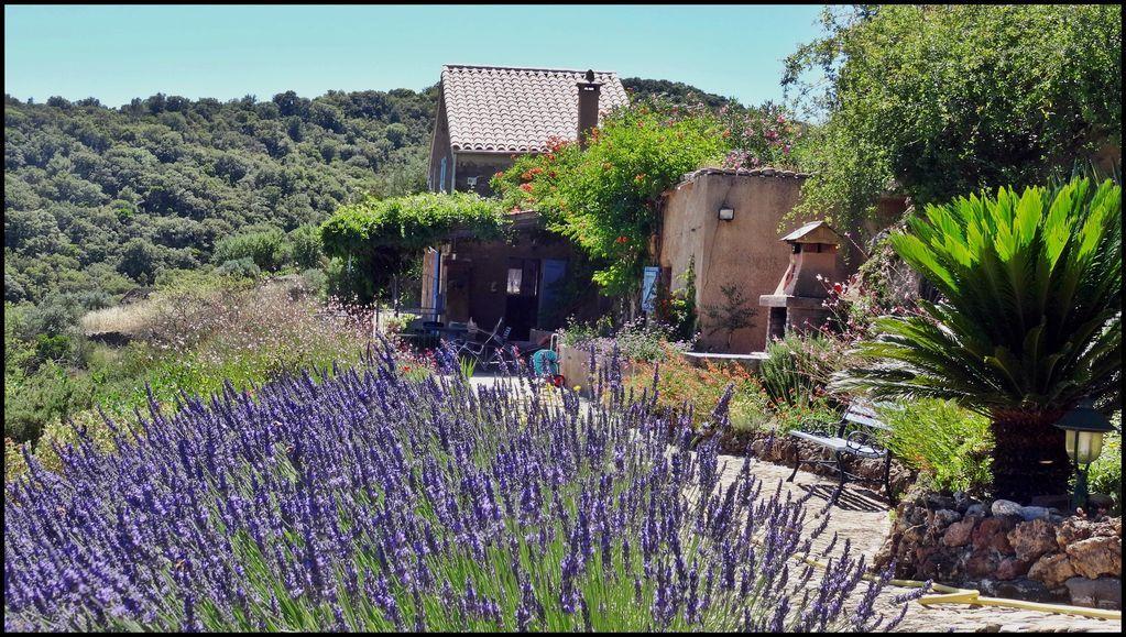 Provista vivienda con jardín