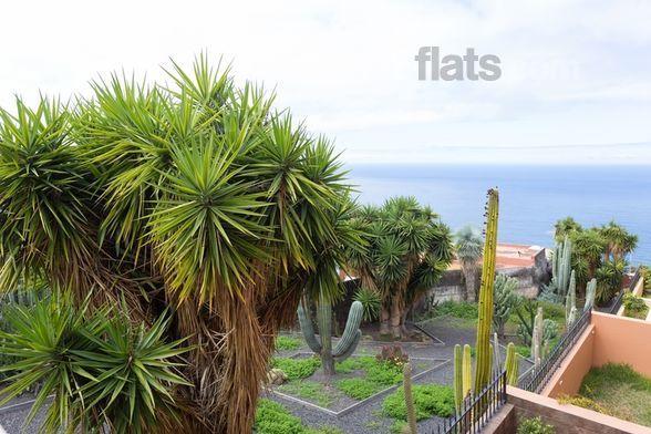Apartamento con balcón en El sauzal