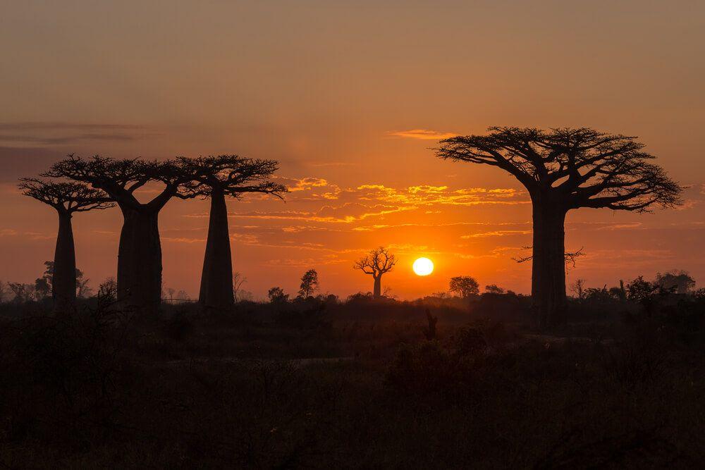 coucher de soleil Madagascar