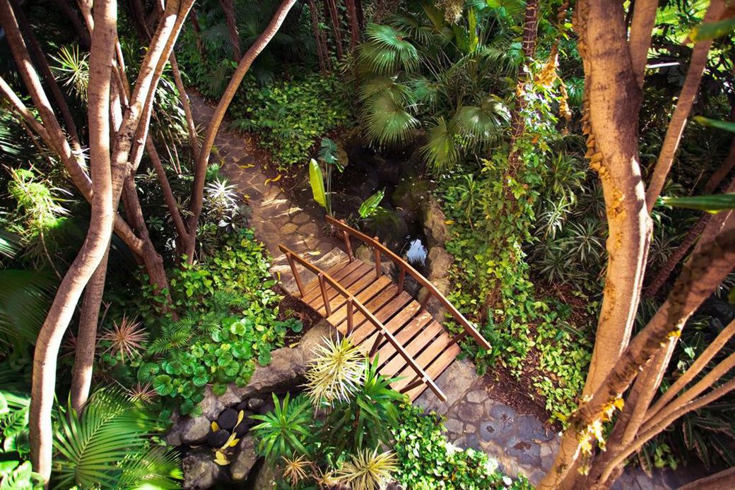 Jardín Botánico del Hotel Botánico de Tenerife