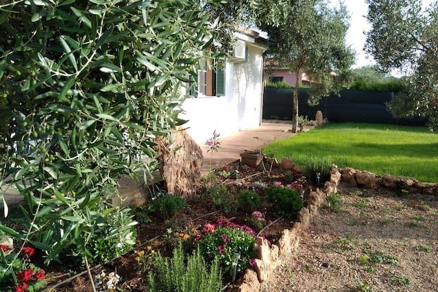 Residencia con jardín en Alghero