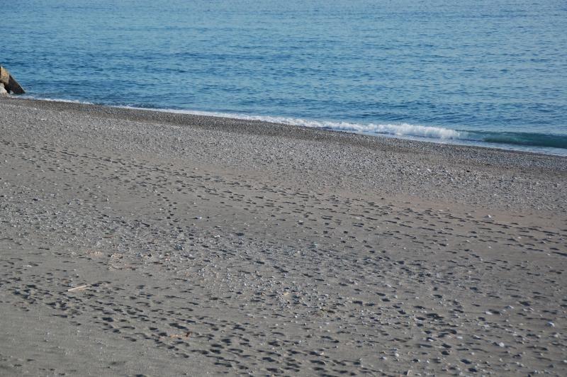 Appartamento 50 m dal mare Cetraro Marina Calabria