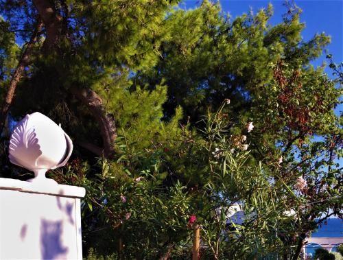 Alojamiento con wi-fi en Taranto