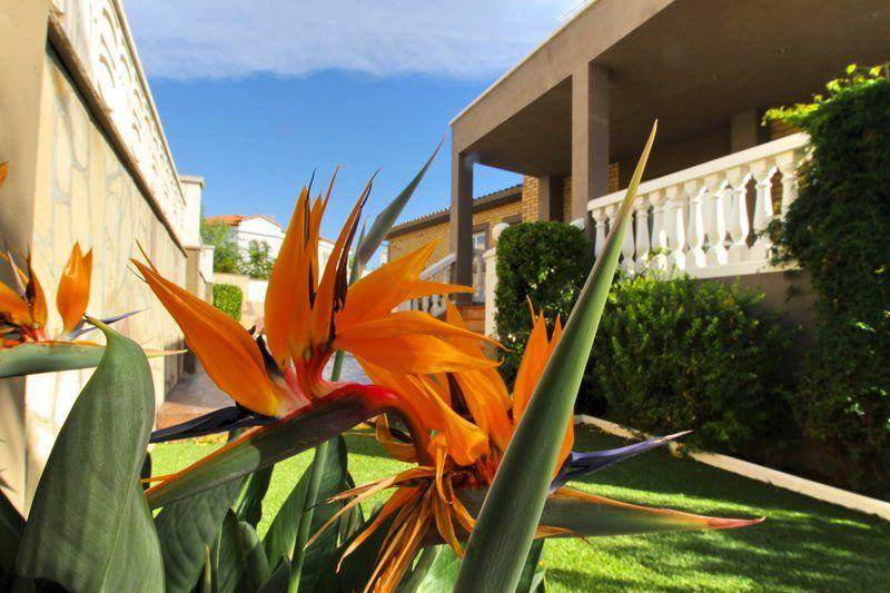 Villa de 4 habitaciones junto a la playa en Pino Alto