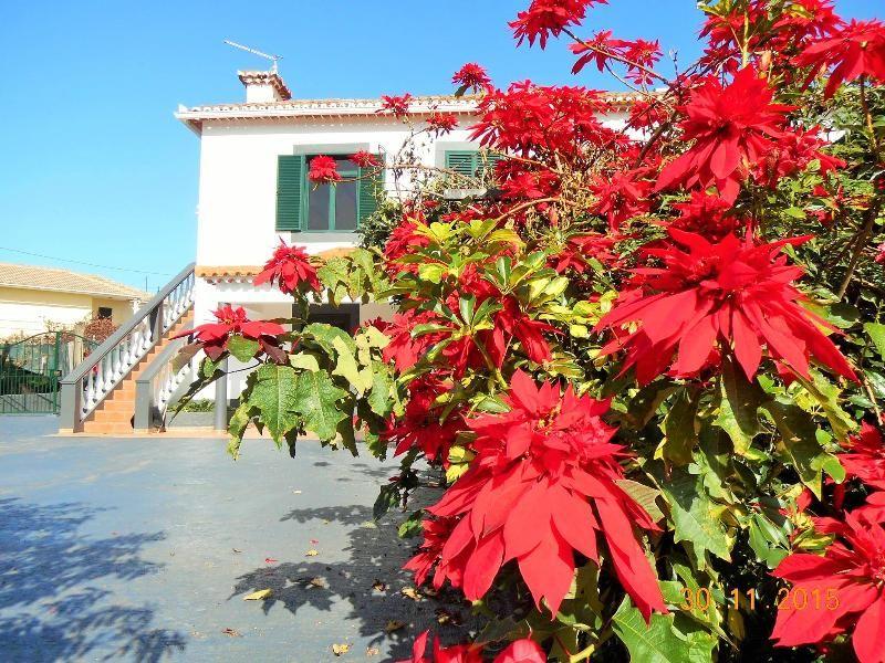 Beautiful appartement in Santana, Madeira