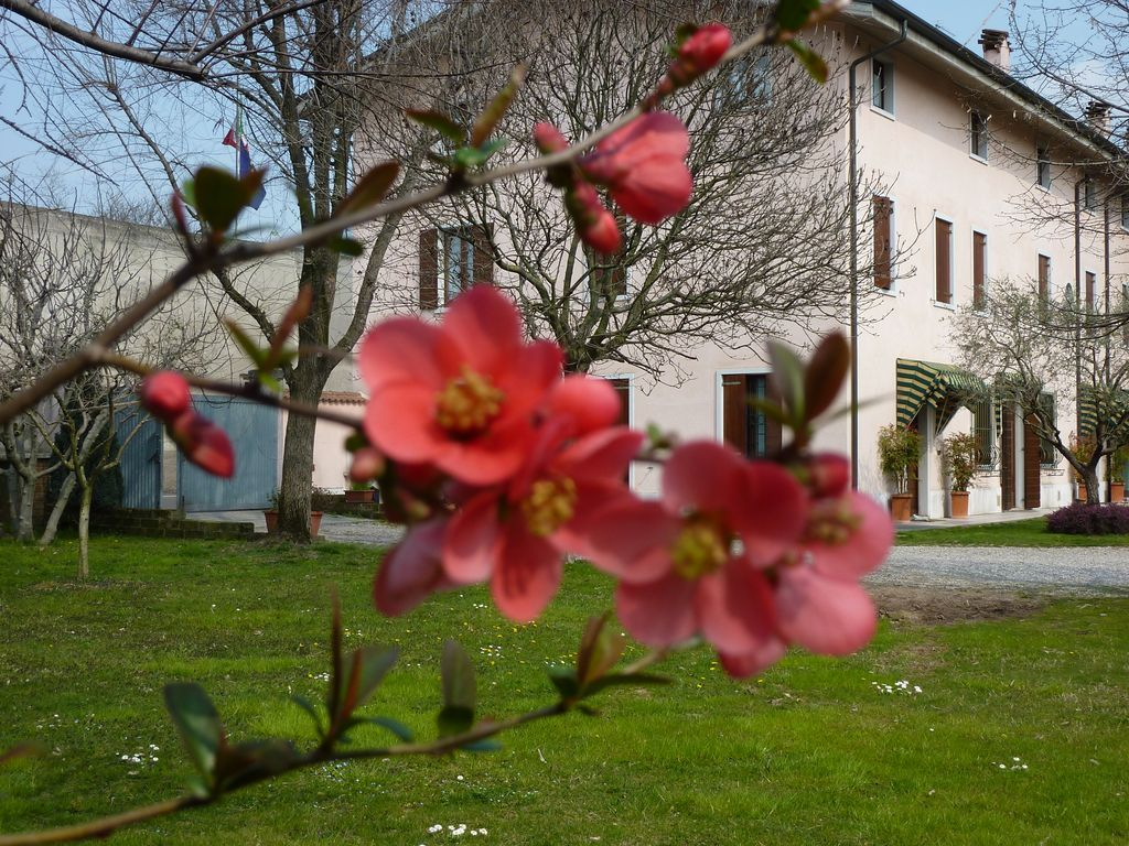 Alojamiento de 60 m² en Valeggio sul mincio (vr)