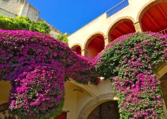 Vivienda de 6 habitaciones en Castelló d´empúries