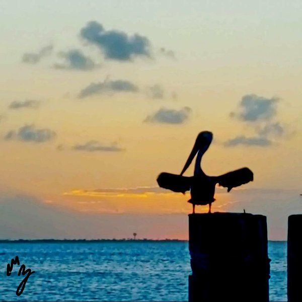 Piso para 5 huéspedes en South padre island