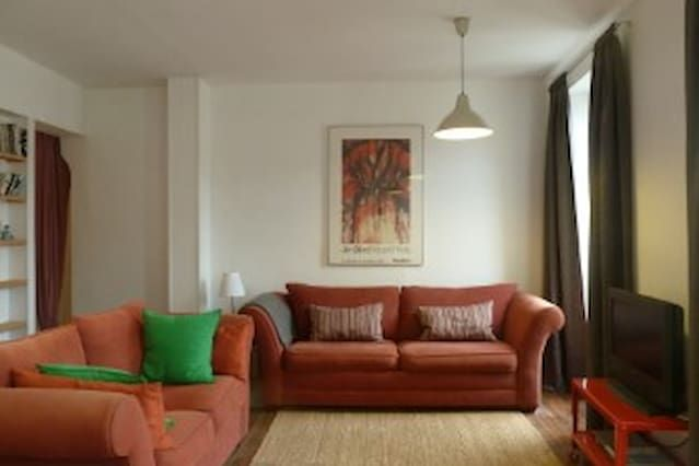 Lovely 2 bed Appartment, Castres