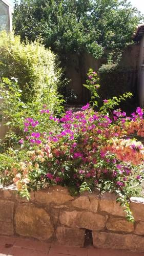 Maravilloso alojamiento con jardín