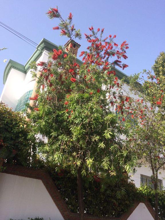 Encantador alojamiento en Casablanca