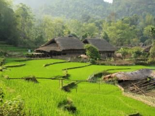 Tay House home stay in Ha Giang