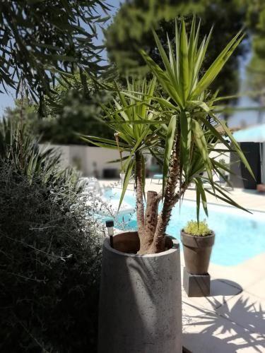 Con vistas apartamento con piscina