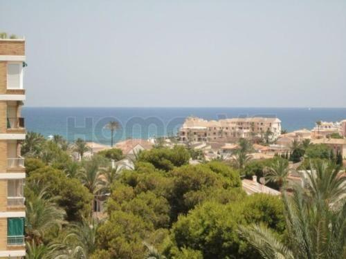 Ausgestattete Wohnung in Playa flamenca
